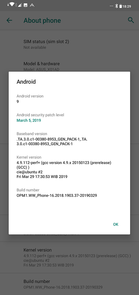 Android Pie Demo on Zenfone Max M2